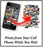 cell_to_prints